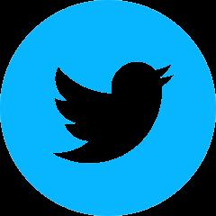 iconmonstr-twitter-4-240-2
