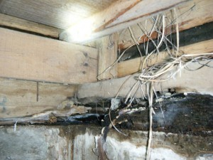 耐震診断で土台の不朽