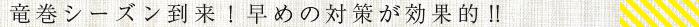 tatsumaki.png