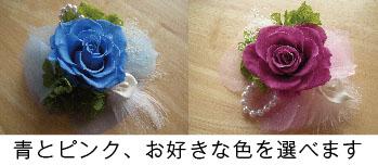 0127津田沼WS説明.jpg