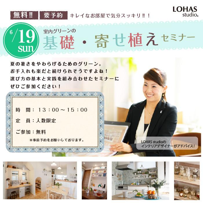 【熊谷・予約制】室内グリーンの 基礎・寄せ植えセミナー(ワークショップ)