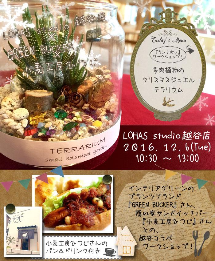 【越谷】ランチ付きワークショップ!多肉植物のクリスマス ジュエル テラリウム(ワークショップ)
