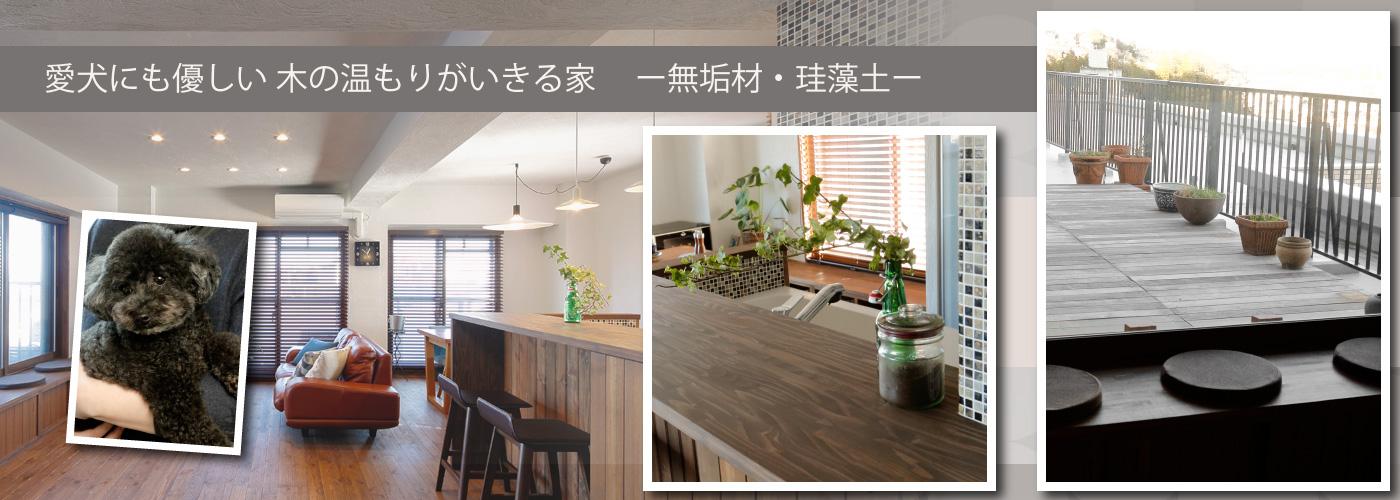 愛犬にも優しい 木の温もりがいきる家 -無垢材・珪藻土-