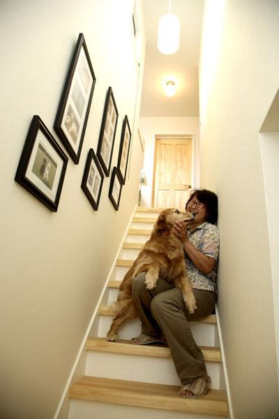 階段は、ペットの写真を飾るギャラリーに